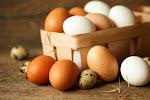 Organic Eggs India