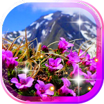 Mountains Flowers HQ LWP
