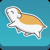 8SEC - Roller Hamster