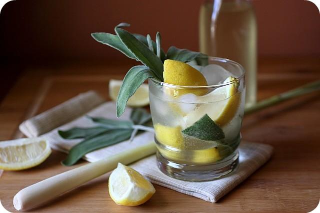 Lemongrass Sage Vodka Fizz Recipe