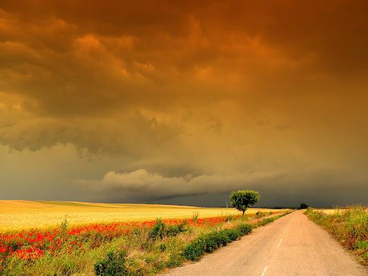 Infuocate nubi di Gianluca Del Bravo