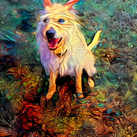 My Bella   by Cassy 67 - Digital Art Animals