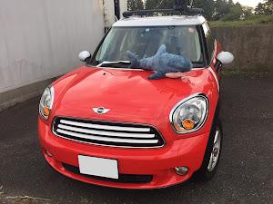 MINI  R60クロスオーバー アルカディアタクシー仕様のカスタム事例画像 🍀ふうさん🌿【⚓️ARCADIA⚓】さんの2020年11月17日13:19の投稿