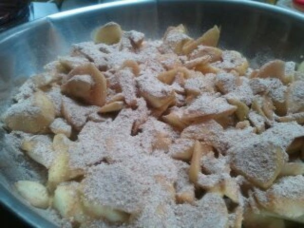 Sprinkle sugar mixture over apples, and toss to coat apples, allow to sit about...