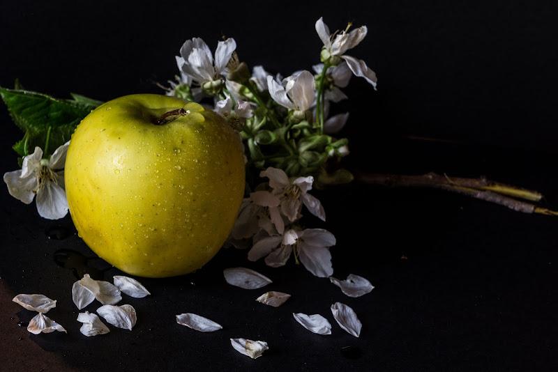 Dal fiore al frutto di simi_ferraro