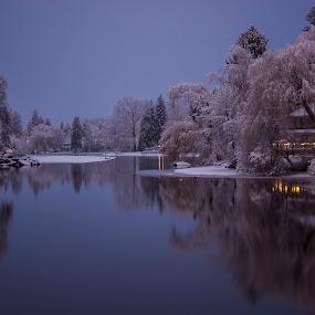 Christmas Along The Pond by Teri Garrison-Kinsman - Landscapes Waterscapes ( winter, riverside, waterscape, snow, christmas, snowy, waterscapes, river )