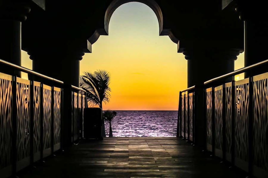 Walkway to the Ocean at Sunset by Shari Brase-Smith - Buildings & Architecture Office Buildings & Hotels ( archway, palm tree, ocean, sunset, hotel, bridge, water )