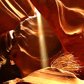 Antelope Canyon by Nancy Young - Landscapes Caves & Formations ( canyon, rock formation, rocks, light, colors )
