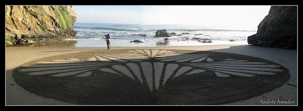 Photo: 'Shells', Santa Cruz, CA