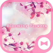 Beautisul Wallpaper Blooming Flowers Theme