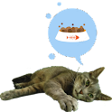 Hartie the cat widget icon