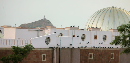 Photo: Library Roof and Pahadi visible in the background