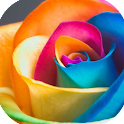 Best Roses Picture icon
