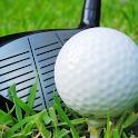 Crazy Golf 3D icon