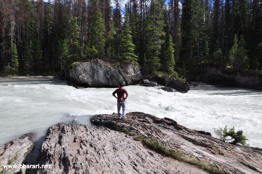 The author enjoying a tranquil moment along the banks of the Kicking Horse River