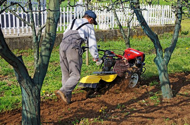 passione agricoltura... di Giuseppe Loviglio