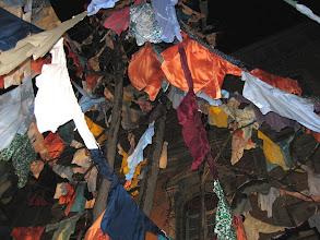 Photo: Piazza Calderini, 31 gennaio 2010, l'albero degli stracci