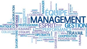 coaching dirigeant,management, coaching d'équipe,manager, vision ,