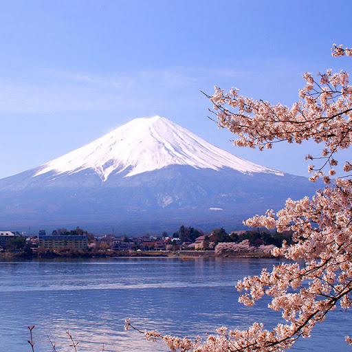 Majestoso Monte Fuji