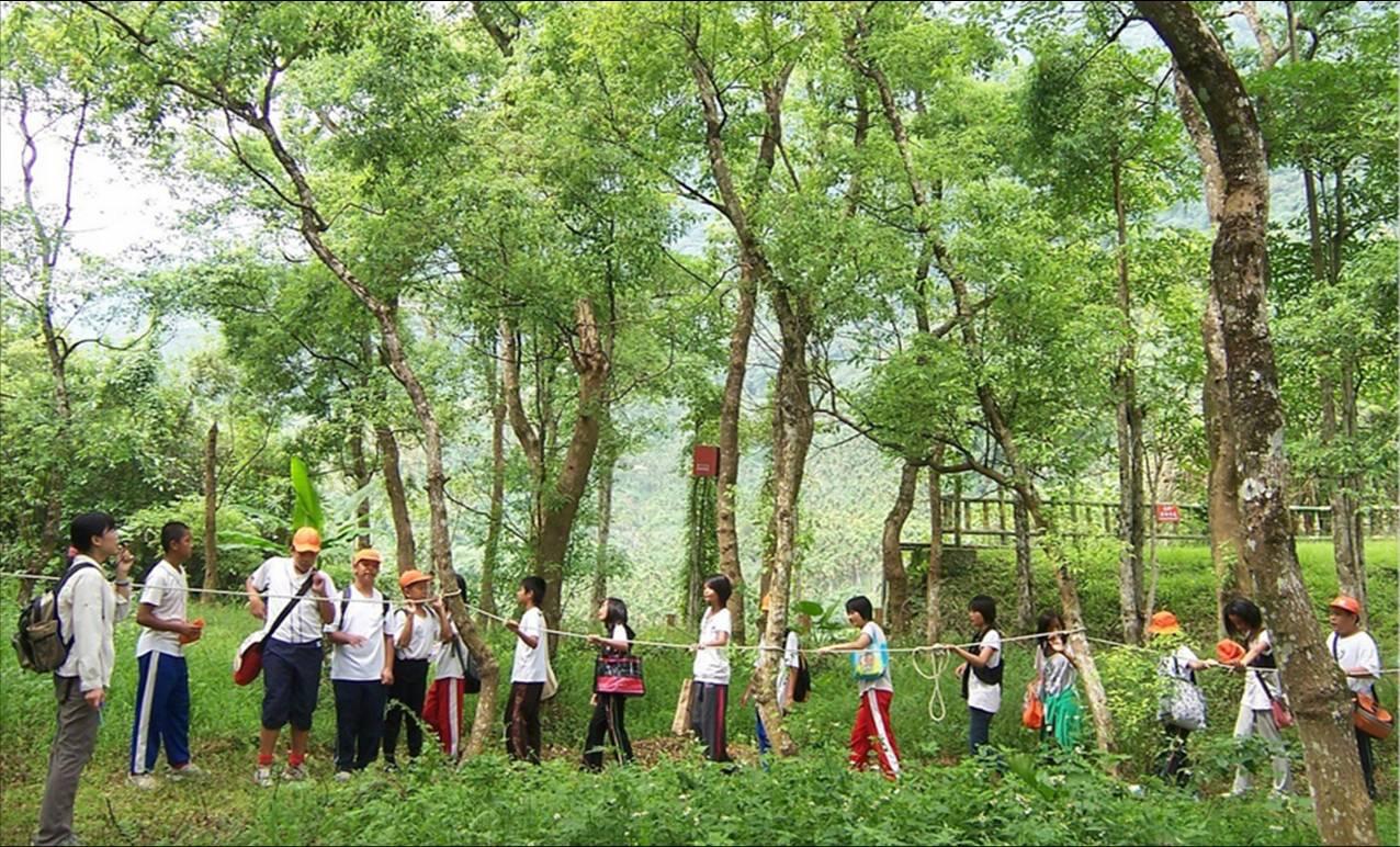 森林響宴.jpg