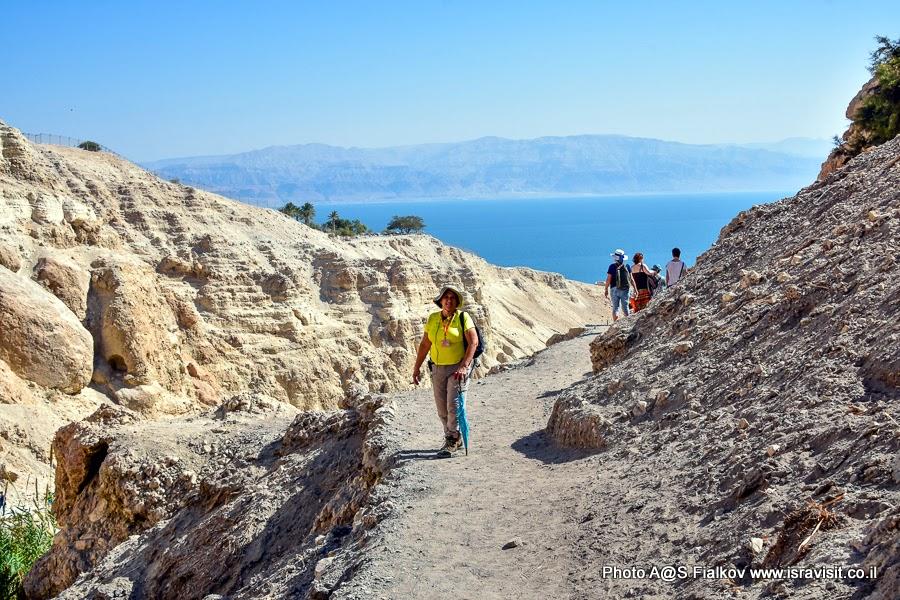 Гид в Израиле Светлана Фиалкова во время экскурсии в заповеднике Эйн-Геди в Иудейской пустыне на берегу Мертвого моря.