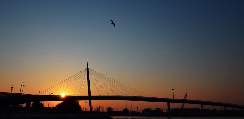 Ponte del mare di Licia Croce