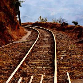 Campos do Jordão SP Brazil  by Marcello Toldi - Transportation Railway Tracks