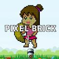 PixelBrick