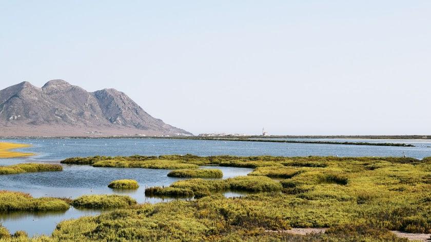 Cabo de Gata, espacio natural seleccionado para visitar con niños.