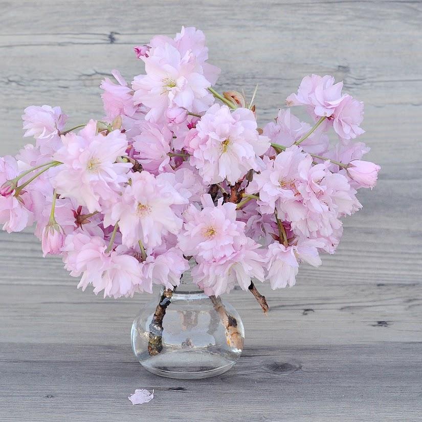 Regalos originales realizados a partir de flores