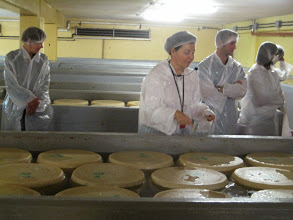 Photo: The brining of parmasean cheese.