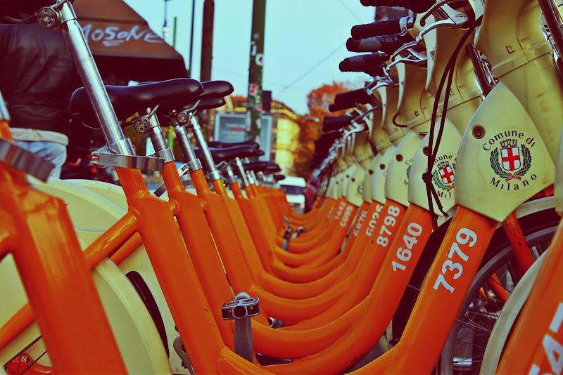 Porta Bici di ciambialonso