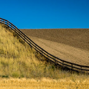 Palouse Fence by Marie Browning - Landscapes Prairies, Meadows & Fields ( contrast, plowed, field, palouse, fence,  )
