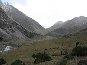 Photo: Tegermach ravine