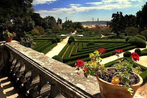 Photo Jardin botanique d'Ajuda