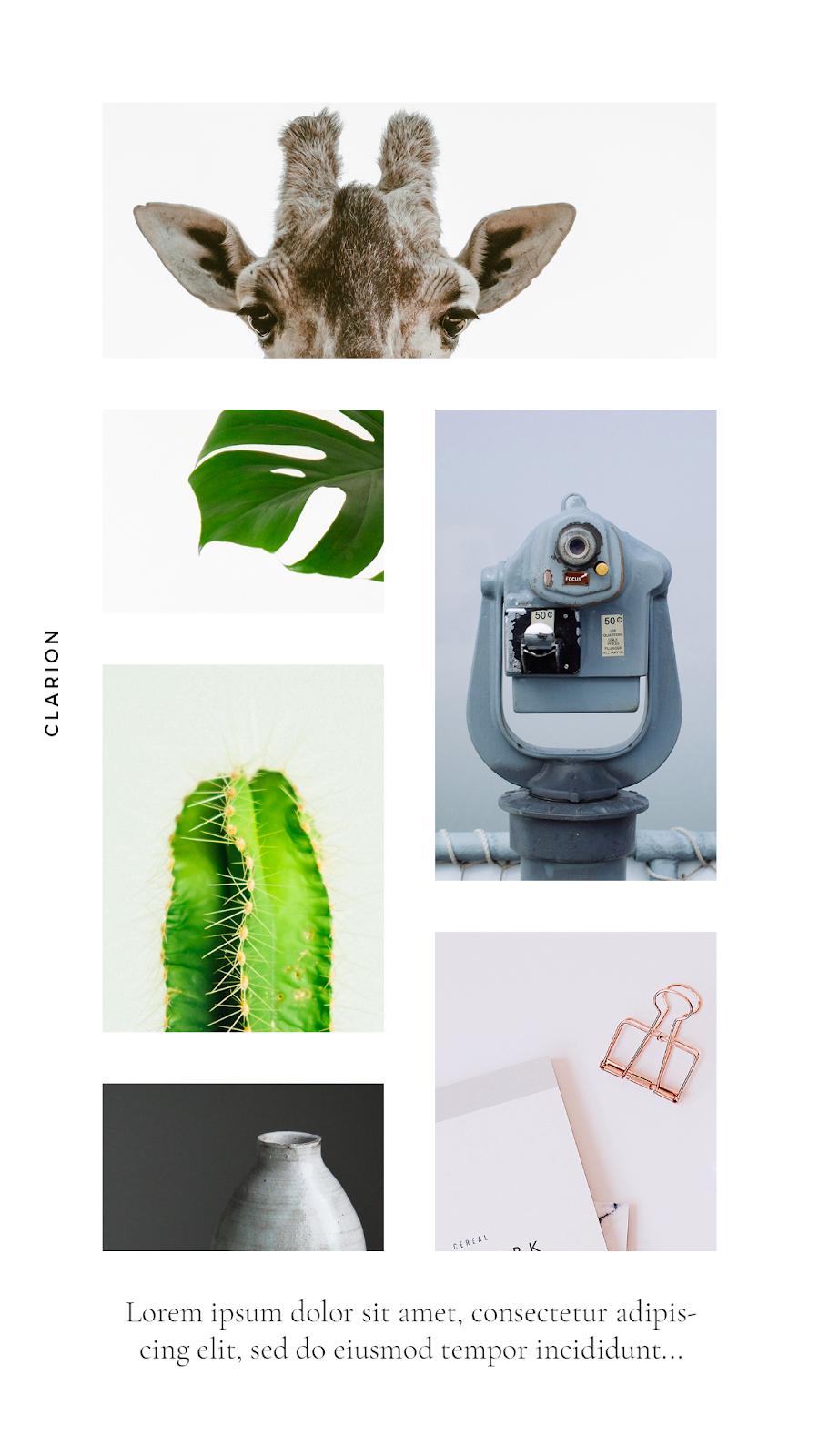 Graphics Eggs Collage Instagram Stories Templates
