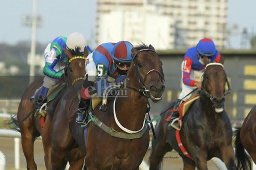 Culebron (Roman Ruler) se quedó con la victoria en el Clásico Propietarios (1000m-Pasto-SI). - Staff ElTurf.com