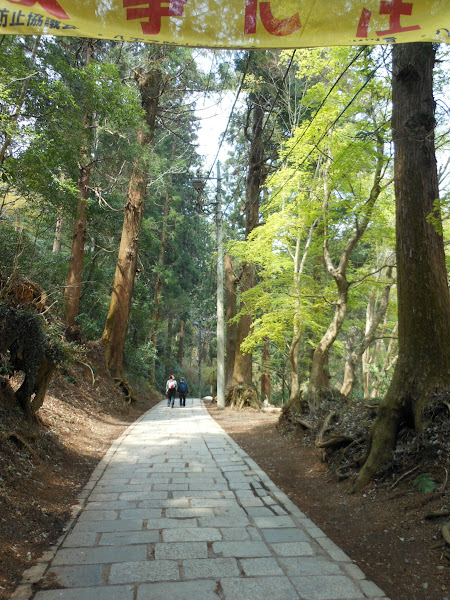 Photo: We started walking up this path before deciding it was too steep/long
