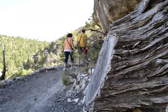 Photo: Walnut Canyon