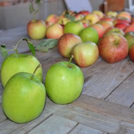 by Kris Van den Bossche - Food & Drink Fruits & Vegetables