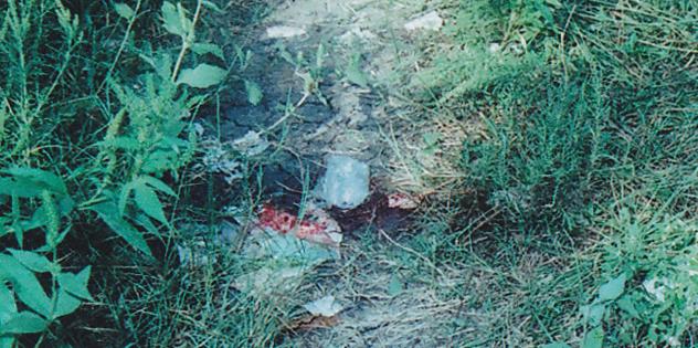 CrimeScene9 elongated blood stain.png
