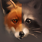 Raccoon and Fox Wallpaper