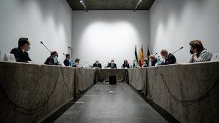 Imagen de la reunión mantenida esta tarde en San Telmo.