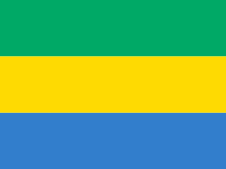 National flag of the Gabon. Picture: GETTY IMAGES