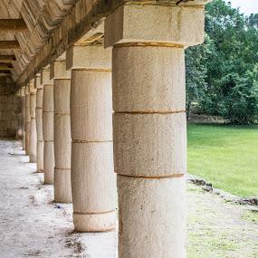Mayan Columns by Pilar Gonzalez - Buildings & Architecture Public & Historical ( mayan architecture, historical sites, columns, perspective, unesco world heritage,  )