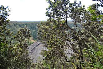 Photo: tra le piante si intravede il cratere