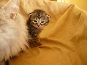 Photo: Quían.. (qué grande es mami!)