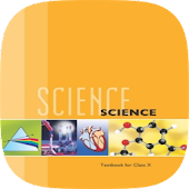 10th Science NCERT Solution
