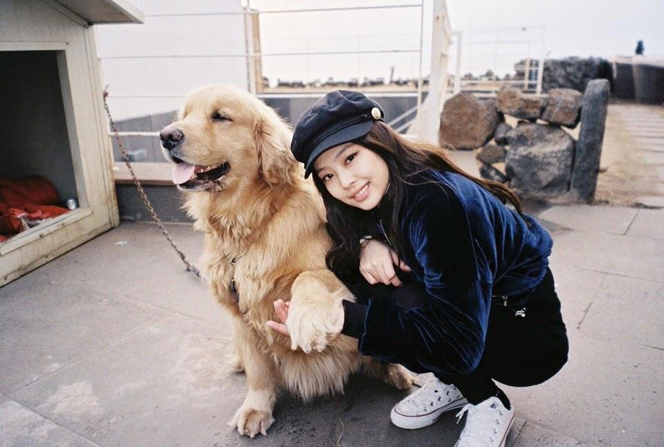 jennie dog