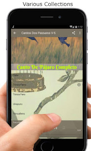Download Canto De Pájaro Completo Nuevo For PC Windows and Mac apk screenshot 5